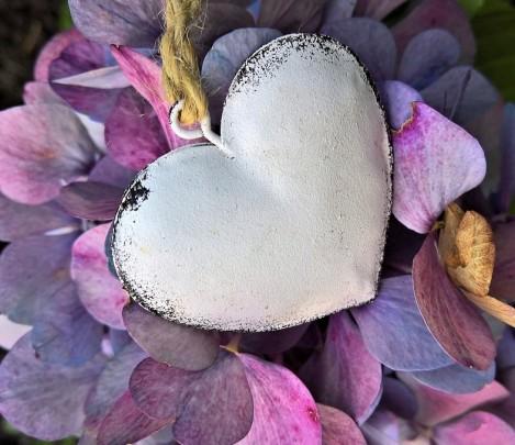 Pohľadnica hortenzia srdiecko  -