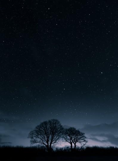 Pohľadnica hviezdy svitanie zimne rano  -