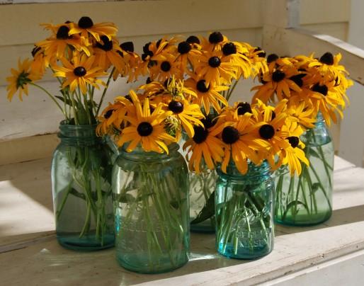 Pohlednice kvetinky slniecka  -