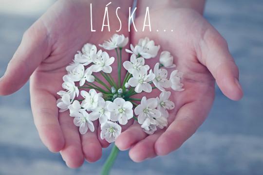 Pohľadnica láska biely kvet  -
