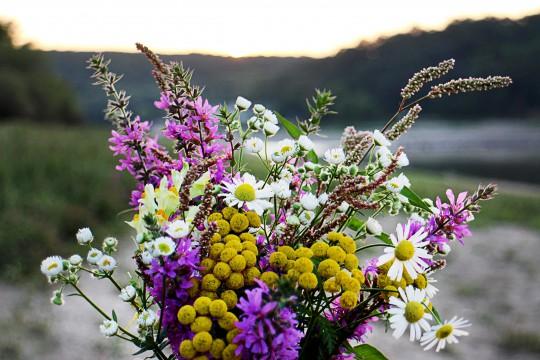 Pohľadnica lucne kvety kytica jesen  -