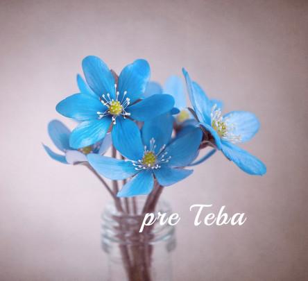 Pohľadnica modry kvietok jar  -