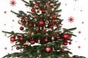 cerveny-vianocny-stromcek.jpg