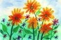 farby_kvety.jpg