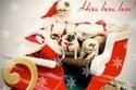 mikulas_santa_sneh_vianoce_sane_sanky_01.jpg