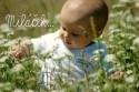 narodenie_dietata_milacek.jpg