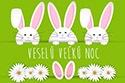 veselu_velku_noc_3.jpg