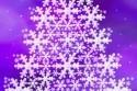 vianoce_novy_rok_036.jpg