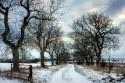 vianoce_novy_rok_zima1.jpg