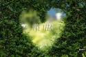 zelene_srdce_sk.jpg