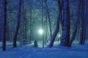 zima_rozpravka_sneh_noc.jpg