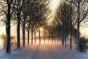 zimna-cesta_slnko_pf.jpg