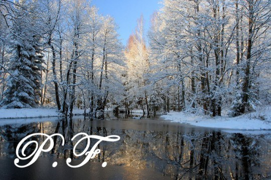 Pohľadnica Nový rok 001  -