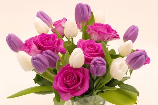 Pohľadnica ruze tulipany  -