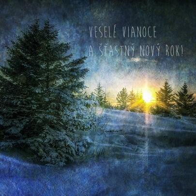 Pohľadnica veselé Vianoce a šťastny Nový rok 04  -