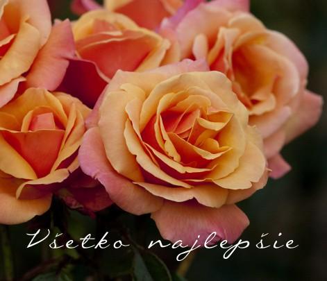 Pohľadnica všetko najlepšie k narodeninám meninám kytica ruze 043  -