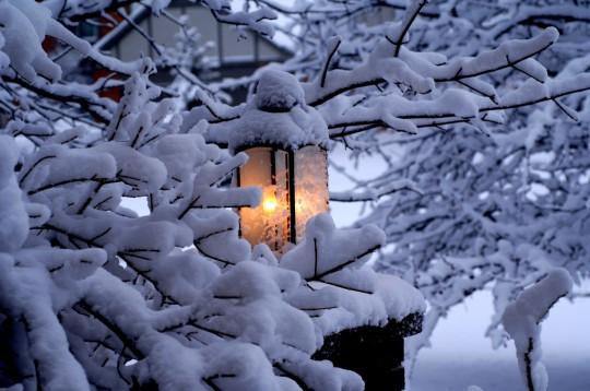 Pohľadnica zima svetielko narnia  -