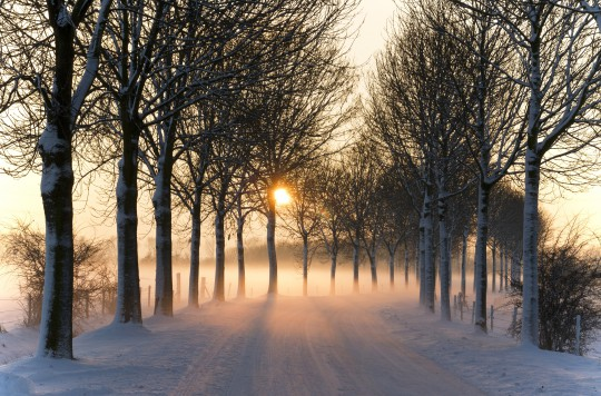 Pohľadnica zimna cesta slnko pf  -