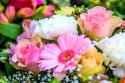 Vaše pohľadnice (birth_month_flowers_primary_1920x1280px_pixabay_516958.jpg)