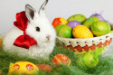 Vaše pohľadnice (easter_bunny_with_eggs_weekly_roundup_100400.jpg)
